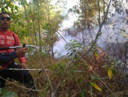 Kebakaran Lahan dan Semak Gunung Batur Bangli Berhasil Dipadamkan